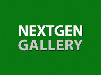 Выводим список последних галерей из NextGen Gallery
